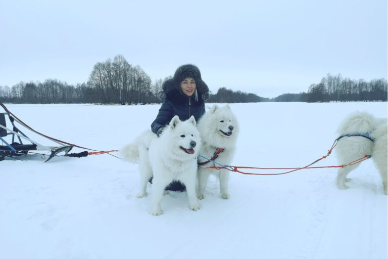 Катание На Хаски В Нижнем Новгороде и области